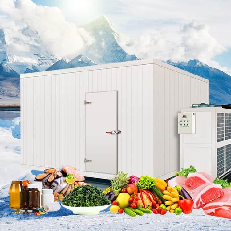 Kho lạnh bảo quản thực phẩm ICE COOL