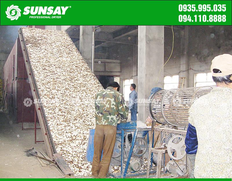 Máy sấy băng tải sấy nông sản khoai mì