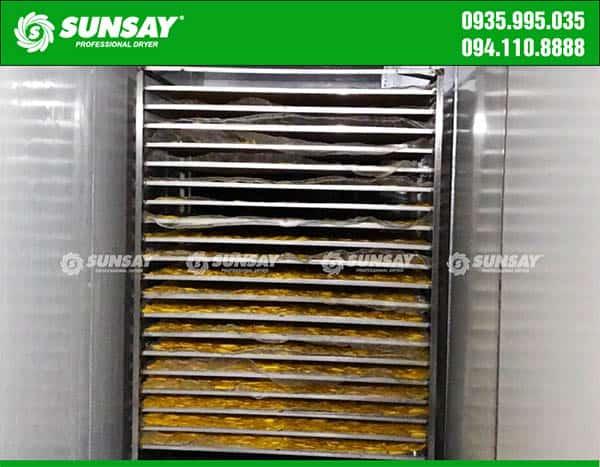 Chế biến xoài sấy dẻo bằng máy sấy lạnh công nghiệp SUNSAY