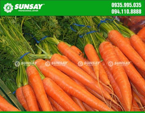 Cà rốt sấy khô đảm bảo dưỡng chất