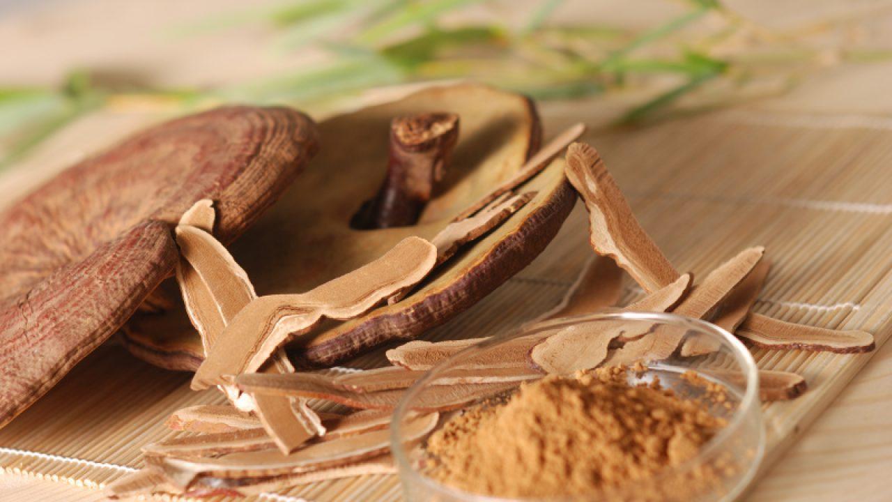 Lựa chọn phương pháp thích hợp sấy khô nấm linh chi