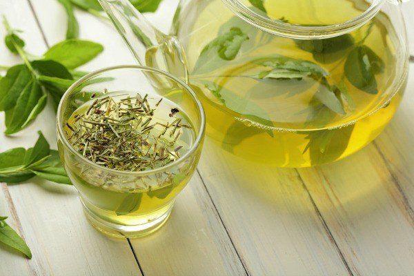 Thưởng thức trà cỏ ngọt