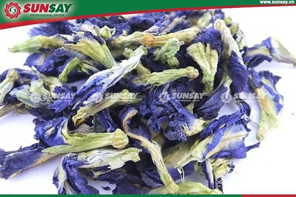 Hoa đậu biếc sấy khô giữ nguyên màu sắc, giá trị dinh dưỡng