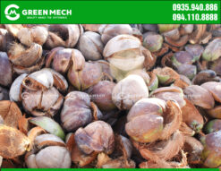 Nguyên liệu vỏ dừa